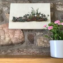 Snowdrop Cluster Canvas Print