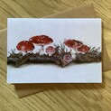 Magical Fly Agaric Toadstools Greetings Card