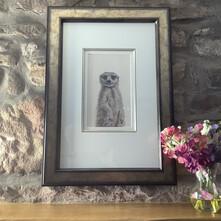 Melvin the Meerkat Original Painting