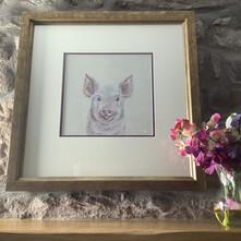 Truffle the Little Pink Piggie Original Painting