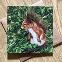 Red Squirrel Nutkin Greetings Card